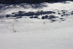 de reflex van sneeuwkristallen royalty-vrije stock afbeeldingen