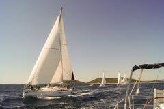 De regatta die komt varen Stock Fotografie