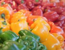 De regeling van de groene paprika Stock Fotografie