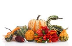 De regeling van de herfst Stock Fotografie