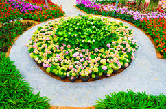 De regeling van de tuin Stock Afbeelding