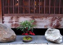 De regeling van Gion stock afbeeldingen