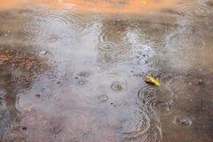 De regen regent op de grond Royalty-vrije Stock Afbeelding