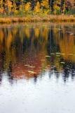 De regen van de herfst Stock Afbeeldingen