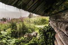 De regen van de zomer Royalty-vrije Stock Fotografie