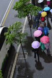 De regenachtige lente Royalty-vrije Stock Foto's