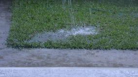 De regenachtige stroom stock videobeelden