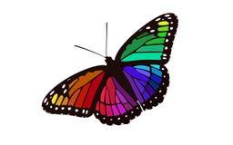 De regenboog kleurde Gevleugelde Monarch - Vlindervector royalty-vrije stock afbeelding