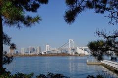 De regenboogbrug in Tokyo, Japan Stock Fotografie