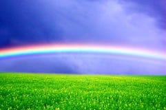 De regenbooglandschap van de lente Stock Fotografie
