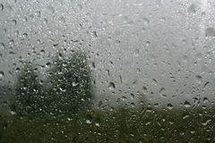 De regendalingen op glas en vertroebelen het silhouet van de bomen en gre Stock Foto's