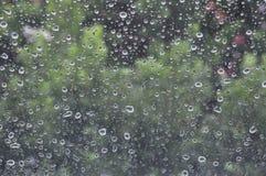 De regendruppels stock afbeelding