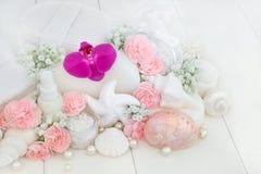 De Reinigende Producten van de schoonheidsbehandeling Stock Fotografie
