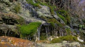 De reis op verbazend watervallandschap, aard van mooie die cascade van zoet water neemt stenen door met mos worden overwoekerd stock video