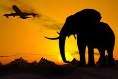 De Reis van Afrika. Stock Foto
