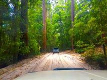 De reis van de safariweg Royalty-vrije Stock Foto