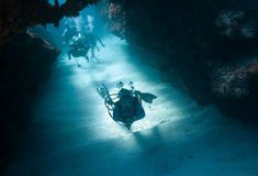 De Reis van de scuba-uitrusting - Grote Kaaiman Royalty-vrije Stock Fotografie