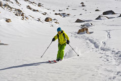 De reis van de ski Stock Fotografie