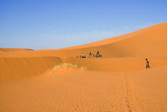 De reis van de woestijn en van de kameel Stock Foto's