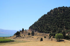 De reis van de zomer op een heuvelig terrein Stock Afbeeldingen