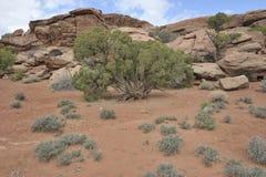 De Reis van Utah Royalty-vrije Stock Afbeeldingen