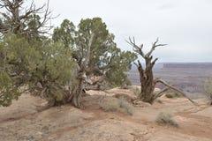 De Reis van Utah Royalty-vrije Stock Foto's