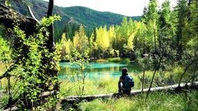 De reizigersvrouw met rugzak zit op een gevallen boom door het blauwe bergmeer in het bos stock videobeelden