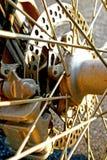 De Rem van de schijf in Zonlicht stock afbeeldingen