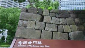 De remainungmuren van Edo Castle bij Keizerpaleis in Tokyo - TOKYO/JAPAN - JUNI 19, 2018 stock videobeelden