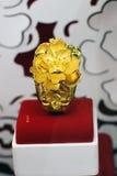 De rena guld- smyckena arkivfoton