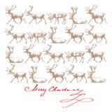 De rendieren van Kerstmis Stock Foto's