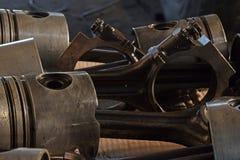 De rengjorda pistongerna royaltyfria foton