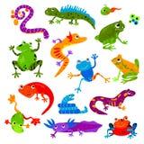 De reptiel vector dierlijke reptilian amfibie froggy van het de schildpadleguaan en kameleon van de karakterhagedis reeks van de  stock illustratie