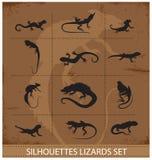 De reptielen en de amfibieen geplaatste symbolen van de inzameling Stock Afbeeldingen
