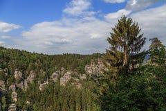 De reserve van de Basteiberg Saksisch Zwitserland Royalty-vrije Stock Foto