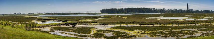 De Reserve van Elkhornslough, Monterey-Baai, Californië Stock Foto's