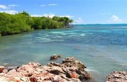 De Reserve van Guanica - Puerto Rico Stock Fotografie