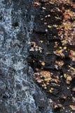 De Reserve van het het noordenverdriet - de Herfst - Cleveland - Ohio - de V.S. royalty-vrije stock foto's