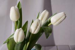De ressort toujours la vie avec le bouquet blanc de fleur de tulipe Photographie stock