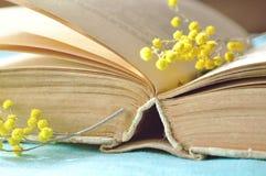 De ressort toujours la vie dans des tons chauds - le vieux livre sur la table sous la lumière ensoleillée avec la petite mimosa s Image libre de droits
