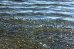De resterande styckena av is svävar i vattnet arkivfoto