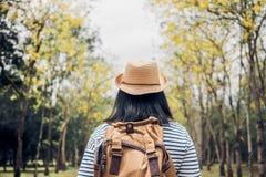 De retour du jeune randonneur de femme de voyageur regardant en avant des avants Photos stock