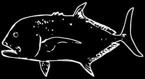 De reus van GT vist trevally roofdier op zwarte achtergrond royalty-vrije illustratie