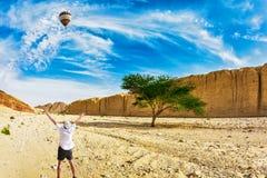 De reusachtige multi-colored ballon vliegt over de hete woestijn Royalty-vrije Stock Foto's