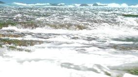 De reusachtige schuimende oceaangolven wassen groene zeewier en koraalriffen stock footage