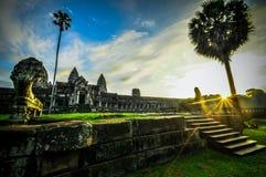 De reuzeboom die Ta Prom en de tempel van Angkor Wat, Siem behandelen oogst, Ca stock fotografie