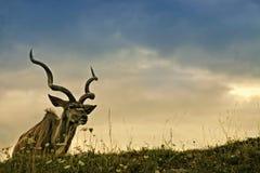 De reuzeelandantilope Stock Foto's