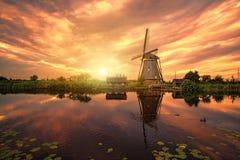 De reuzegroepering van Nederlander Stock Foto's