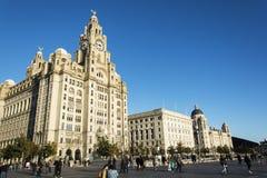 De Reuzen van Liverpool - Stad van Cultuur 2018 royalty-vrije stock fotografie
