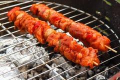 De ribben en de kebabs van de houtskoolbarbecue Royalty-vrije Stock Foto's